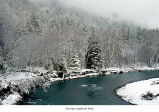 Hoh River campground during winter, Olympic National Park, date unknown
