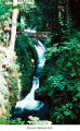 Sol Duc Falls, Olympic National Park, date unknown