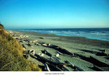 Kalaloch beach, Olympic National Park, date unknown