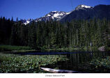 Elk Lake, Olympic National Park, date unknown