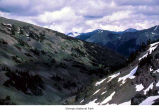 Badger Valley and Baldy Mountain, Olympic National Park, date unknown