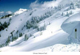 Hurricane Ridge ski slopes, Olympic National Park, date unknown