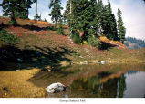 Pond on First Divide, probably during autumn, Olympic National Park, date unknown