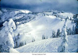 Hurricane Ridge seen from Hurricane Hill, probably during winter, Olympic National Park, date...