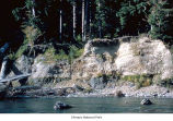 Glacial till on the Queets River, probably in Olympic National Park, date unknown