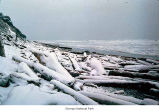 Kalaloch beach after a snow, Olympic National Park, date unknown