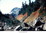 Rocky valley near Mount Skokomish, probably during autumn, Olympic National Park, date unknown