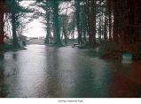 Rialto Beach picnic area flooded during rain, Olympic National Park, date unknown