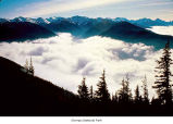 Hurricane Ridge at Lillian Valley covered in fog, Olympic National Park, date unknown