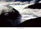 Fog in the Olympic Mountains, Olympic National Park, date unknown