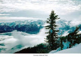 Bailey Range seen from Hurricane Ridge, Olympic National Park, date unknown
