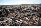 Burned clearcut, Olympic Peninsula, date unknown