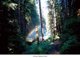 Sol Duc Falls rainbow, Olympic National Park, date unknown