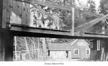 Dogs on a small footbridge near a house, Mora, date unknown