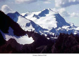 Mount Tom seen from Appleton Pass, Olympic National Park, date unknown