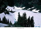 Seven Lakes Basin, Olympic National Park, date unknown