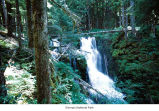 Canyon Creek Falls, Olympic National Park, date unknown