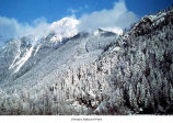 Mount Lincoln after a snow seen from Lake Cushman, Olympic National Forest, date unknown