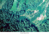 Low Divide avalanche paths seen from the air, Olympic National Park, date unknown