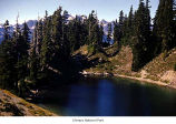 Lake Beauty on High Divide, Olympic National Park, date unknown
