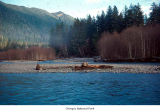 Hoh River in winter, Olympic National Park, date unknown