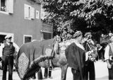 Horse trappings at Alkar Festival, Sinj, Croatia (former Yugoslavia), August 1937