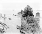 Cake Island and Sea Lion Rocks from James Island, La Push, ca. 1929