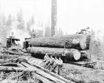 Logging operation at the Miller Logging Co., Sultan, ca. 1930