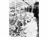 Children in interior of greenhouse at Monroe, ca. 1930