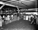 Workers in the trimming and packing shed, Frye's Lettuce Farm, Monroe, ca. 1931