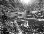 Above the Great Northern Railway Company dam at Olney Creek, September 6, 1928