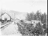 Heybrook Lumber Co. showing loggers' cabins to the right near Index, ca. 1913