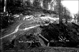 Grading new county road, Snohomish County, ca. 1911