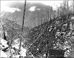 Logged off land, Snohomish County, ca. 1927