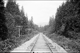 Great Northern Railway tracks in the Cascade Mountains,  n.d.