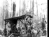 Logging crew and donkey engine, possibly Nippon Lumber Co., Snohomish Co., ca. 192