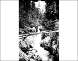 Fishermen at the north fork of the Skykomish River, n.d.