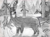 Drawing of a deer in a  forest, produced on the Olympic Peninsula, 2005
