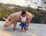 Lizbeth as a young child with a pig in Mexico, ca. 1989