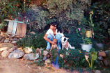 Lizbeth outside with two dogs, in Michoacán, ca. 2000