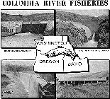 Program of Rehabilitation of the Columbia River Fisheries