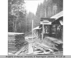 Haines Lumber Mill, Succotash Valley, August 1896