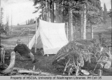 Man at campsite in Paradise Park, Mount Rainier, ca. 1894