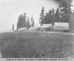 Reese's Camp in Paradise Park, ca. 1901