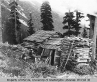 Man sitting next to the Knapp log cabin near White River, July 22, 1910