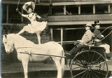 Teh Wentworth Trio, a circus act with Barnum and Bailey.