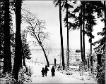 Group walking on shore of Green Lake after snowfall, ca. 1894