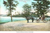 Horse and carriage on Lake Washington Boulevard, Seattle, n.d.