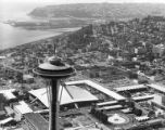 Bird's eye view of the Space Needle and the Century 21 fairgrounds, Seattle, Washington, 1962