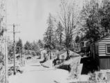 Completed homes along paved road, View Ridge neighborhood, Seattle, ca. 1942-1949